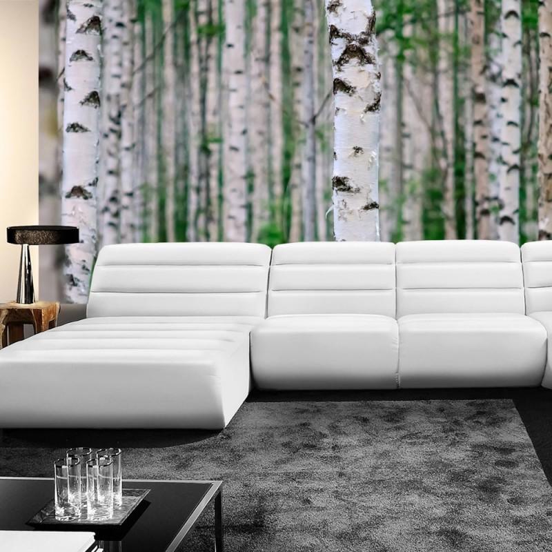 fototapete birkenst mme. Black Bedroom Furniture Sets. Home Design Ideas