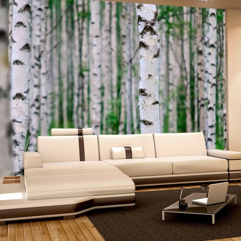 vlies fototapete birch forest ii wald tapete. Black Bedroom Furniture Sets. Home Design Ideas