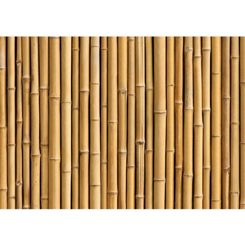 vlies fototapete golden bamboo bambus tapete gold gelb. Black Bedroom Furniture Sets. Home Design Ideas