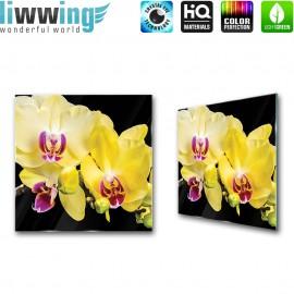 Glasbild ''no. 1470''   Orchideen Glasbild Blume Natur Pflanze gelb   liwwing (R)