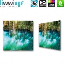 Glasbild ''no. 1354'' | Wasser Glasbild Paradies Natur Pflanzen Felsen türkis | liwwing (R)