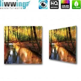 Glasbild ''no. 1355''   Wald Glasbild Bäume Natur Herbst Blätter Fluss braun   liwwing (R)