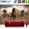 Vlies Fototapete no. 3221 | Tiere Tapete Pferde, Hengste, Galopp, Holz braun | liwwing (R)