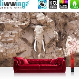 Vlies Fototapete no. 3228 | Afrika Tapete Elephant, Elefant, Steinwand, Elfenbein braun | liwwing (R)