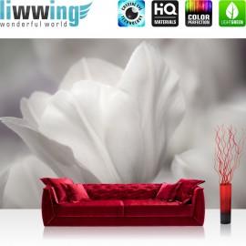 "Vlies Fototapete ""White Tulips "" | Ornamente Tapete Tulpen Blumen Blumenranke grau Natur Pflanze weiß"