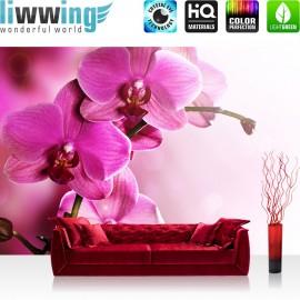 "Vlies Fototapete ""Pink Orchid"" | Ornamente Tapete Orchidee Blumen Blumenranke Rosa Natur Pflanzen pink"