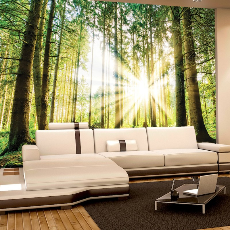 vlies fototapete no 3256 vliestapete liwwing r wald. Black Bedroom Furniture Sets. Home Design Ideas