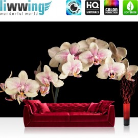 "Vlies Fototapete ""Creamy Orchid "" | Ornamente Tapete Orchidee Blumen Blumenranke Pink Natur Pflanzen rosa"