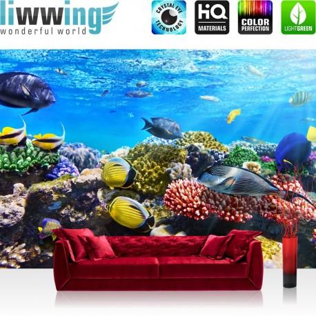 "Vlies Fototapete ""Underwater Reef "" | Tiere Tapete Aquarium Unterwasser Meereswelt Meer Fische Riff Korallenrif blau"