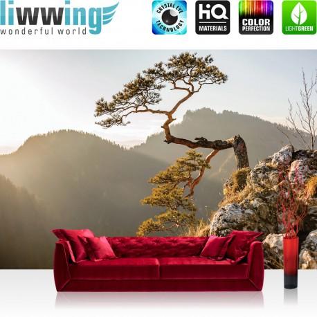 Vlies Fototapete no. 3353 | Berge Tapete Felsen, Nadelbaum, Sonnenaufgang, Gebirge natural | liwwing (R)