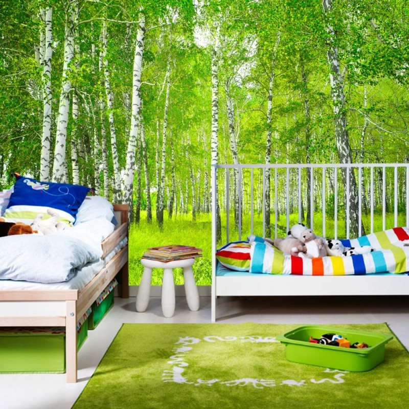 vlies fototapete sunny birch forest wald tapete. Black Bedroom Furniture Sets. Home Design Ideas