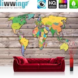 Vlies Fototapete no. 3522   Welt Tapete Weltkarte, politisch, Holzwand bunt   liwwing (R)