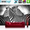 Vlies Fototapete no. 3576 | Afrika Tapete Zebra, Streifen schwarz - weiß | liwwing (R)