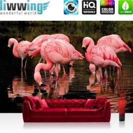 Vlies Fototapete no. 3577 | Afrika Tapete Pelikan, Wasser, Natur rosa | liwwing (R)
