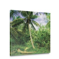Leinwandbild Palmen Strand Tropisch Ausblick Pflanzen | no. 4485