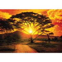 Fototapete Afrika Tapete Sonnenuntergang Baum Weg Giraffe Savanne Himmel Pflanze Afrika gelb | no. 999