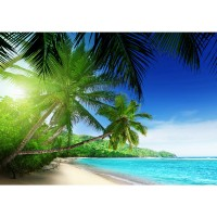 Fototapete Meer Tapete Wasser Palmen Paradies blau | no. 3160
