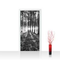 Türtapete - Sonnenuntergang Wald Bäume Wiese | no. 642