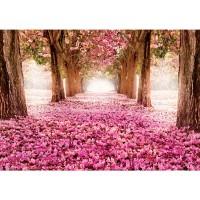 Fototapete Natur Tapete Allee Bäume Blüten rosa | no. 1572