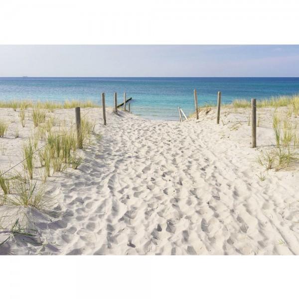 Fototapete Meer Tapete Sand, Küste, Schilf bunt   no. 3297