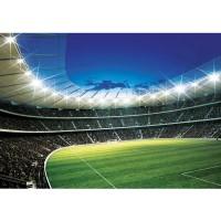 Fototapete Fußball Tapete Fußballstadion Fankurve Flutlicht Rasen Fans Tor Sterne Tribüne grün | no. 939