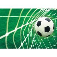 Fototapete Fußball Tapete Fussball Netz Wiese grün | no. 272
