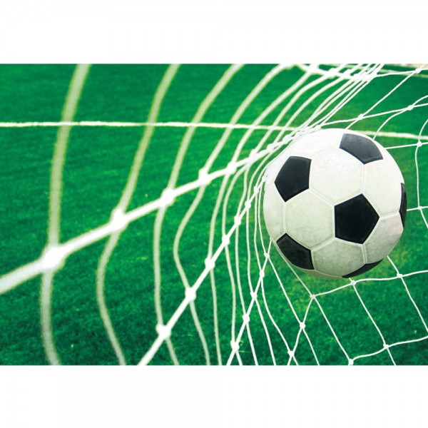 Fototapete Fußball Tapete Fussball Netz Wiese grün   no. 272