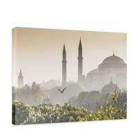 Leinwandbild Istanbul Türkei Moschee Natur Nebel | no. 250