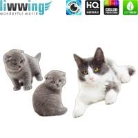 Wandsticker - No. 4832 Wandtattoo Sticker Katze Mietz Miau Haustiere Kinder Kitten