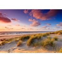 Fototapete Strand Tapete Strand Düne Sonnenuntergang Beach Sand bunt | no. 245