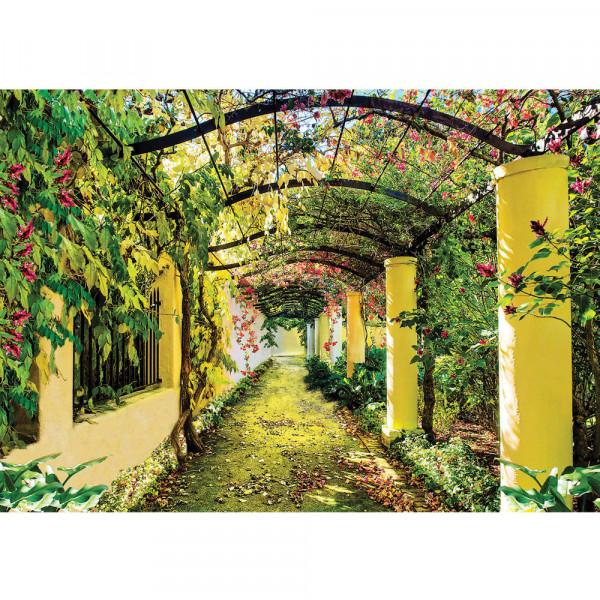 Fototapete Pflanzen Tapete Garten Weinblätter Pflanze Säulen grün Garten Blumen grün   no. 333