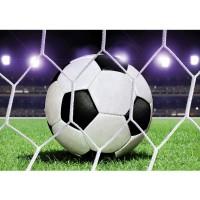 Fototapete Fußball Tapete Fußball Netz Rasen Licht Stadion bunt weiß weiß | no. 431