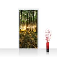 Türtapete - Sonnenuntergang Wald Bäume Wiese | no. 638