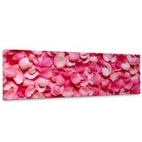 Leinwandbild Blüten Liebe Love Rot Natur | no. 188