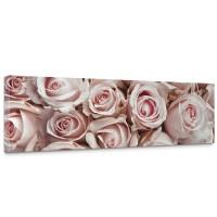 Leinwandbild Blumen Rose Blüten Natur Liebe Love Blüte Weiß | no. 189