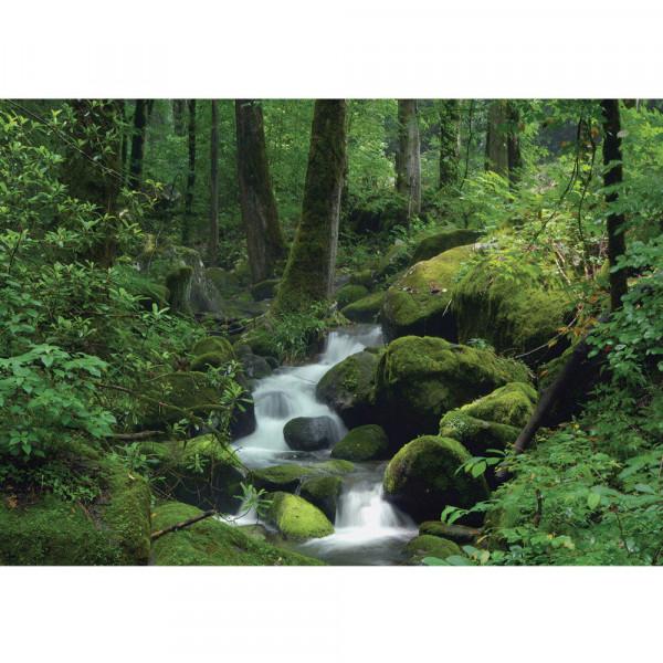 Fototapete Wald Tapete Wasserfall Wald Bäume Felsen Natur Baum grün | no. 446
