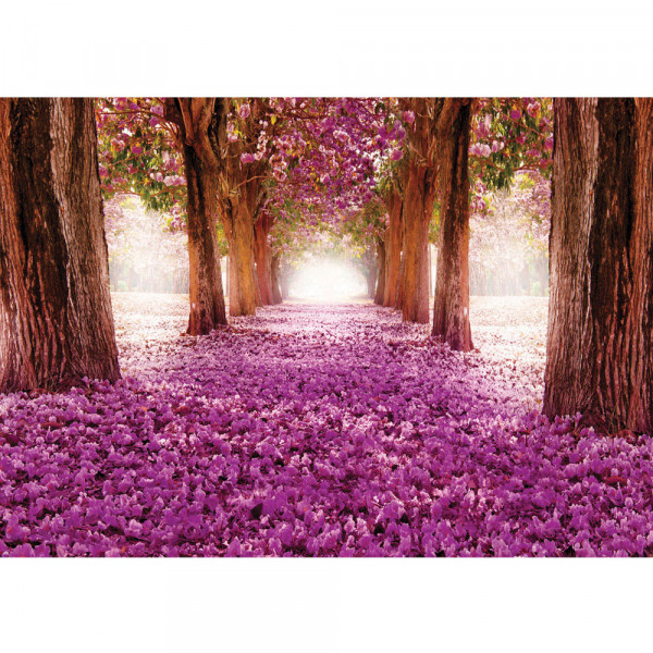 Fototapete Natur Tapete Weg Bäume Blüten Allee Frühling lila | no. 721