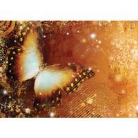 Fototapete Kunst Tapete Ornamente Schmetterling orange | no. 460
