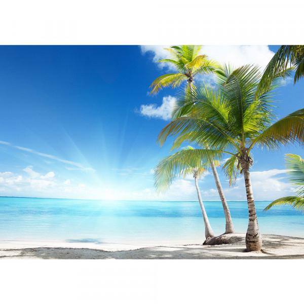 Fototapete Strand Tapete Palme Meer Wolken Sonne Schatten Karibik blau | no. 2444