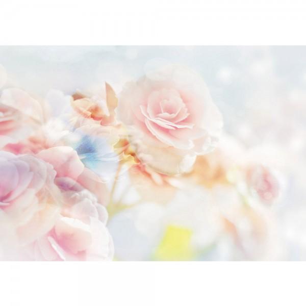 Fototapete Blumen Tapete Blüten Blätter Rose weiß   no. 2132