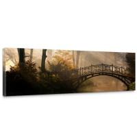Leinwandbild Wald Wasser Bäume Herbst Natur Sonne | no. 264