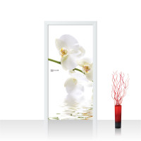 Türtapete - Orchidee Blumen Blumenranke Weiß Natur Pflanzen Abstrakt | no. 201