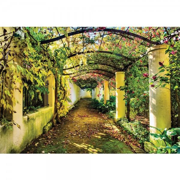Fototapete Natur Tapete Garten Weinblätter Säulen Weg grün   no. 676