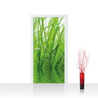 Türtapete - Gräser Blatt Wasser Gras Tau Grashalm Tropfen | no. 4299
