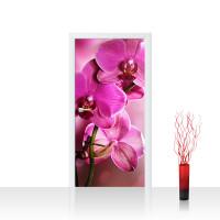 Türtapete - Pink Orchid Orchidee Blumen Blumenranke Rosa Pink Natur Pflanzen | no. 99