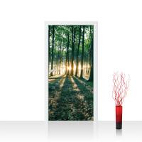 Türtapete - Sonnenuntergang Wald Bäume Wiese | no. 641