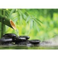 Fototapete Wellness Tapete SPA Stein Bambus Wasser Pflanze grün | no. 4523