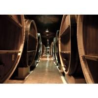 Fototapete Old Wine Barrels Kunst Tapete Weinkeller Weinfässer Fass Fässer Keller Stollen braun | no. 58