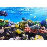 Fototapete Underwater Reef Tiere Tapete Aquarium Unterwasser Meereswelt Meer Fische Riff Korallenrif blau | no. 105
