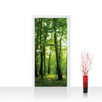 Türtapete - Bäume Wald Sonne Wiese | no. 528